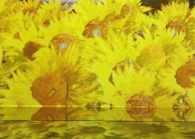Girasoli Van Gogh mostra il sogno