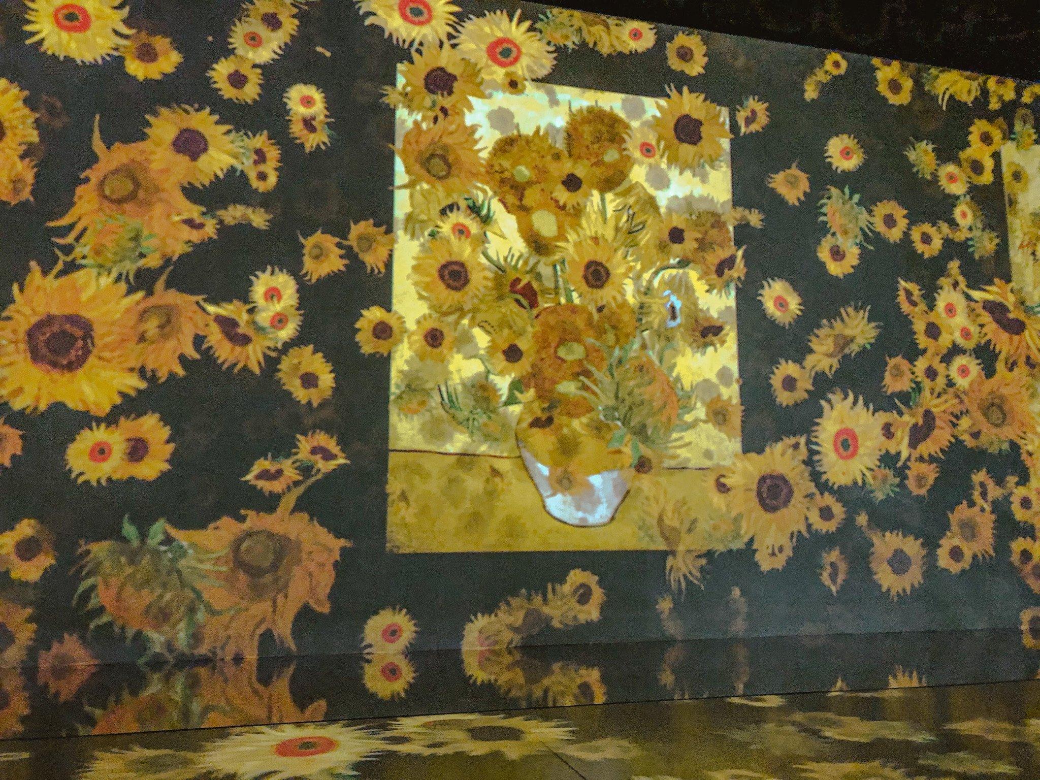 girasoli Van Gogh mostra immersa