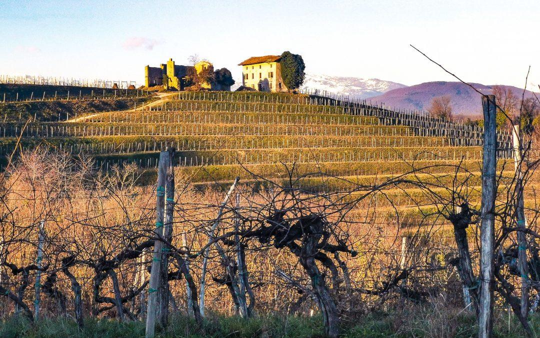 Due cammini del Friuli Venezia Giulia tra i primi 10 più cercati in Italia